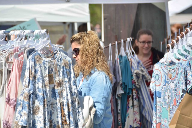 Mt Laurel Spring Festival 2017.jpg