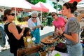 280-EVENT-Farmers-Market---2.jpg
