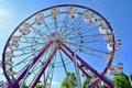 State Fair - 35.jpg