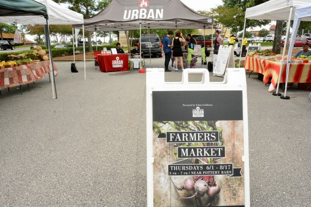 Summit Farmer's Market Photos - 13.jpg