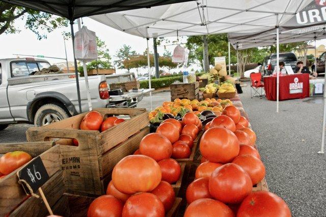 Summit Farmer's Market Photos - 4.jpg