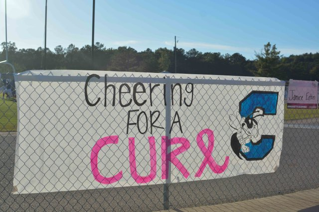 Chelsea Middle School Pink Out-10.jpg