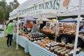 OMSP harvest festival  - 19.jpg