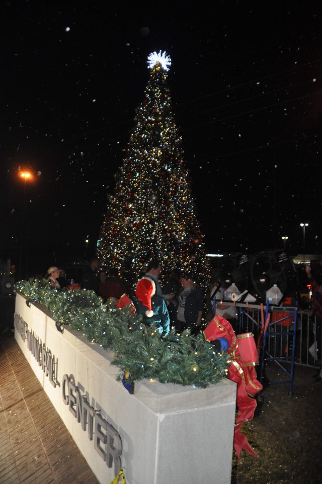 Hoover Christmas tree lighting 2017-39