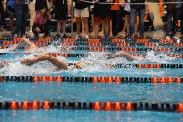 Swim-Dive reset-13.jpg