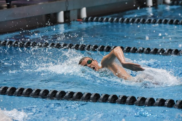 280 SPORTS SwimDive-7.jpg