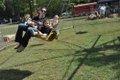 Mt Laurel Fall Festival 2014