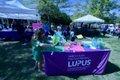 lupus walklup - 7.jpg