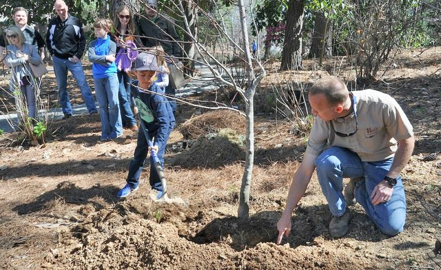 EVENTS---Arbor-Day_Aldridge-tree-planting-3-4-17.jpg