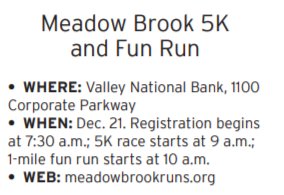 meadow brook run.PNG