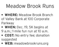 Meadow Brook Runs.PNG