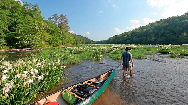 280-FEAT-Cahaba-river-hunter-2.jpg