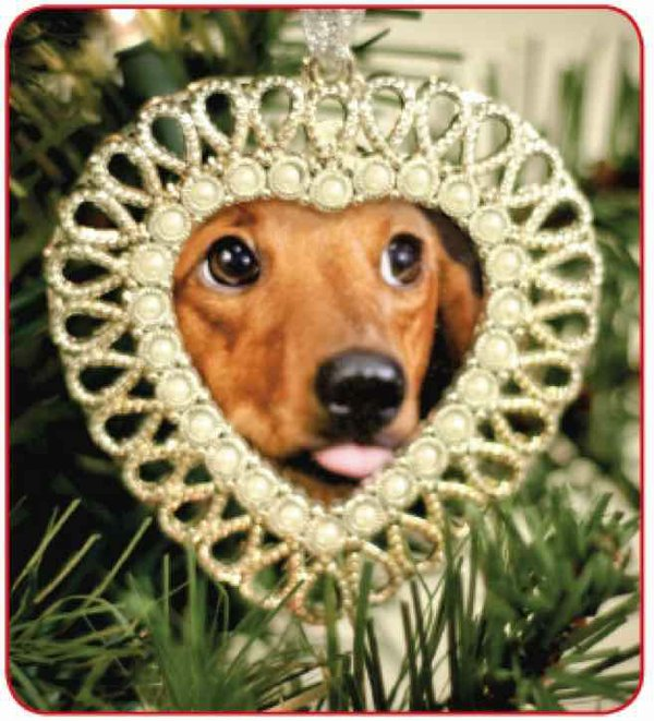 Shelby Humane Society ornament