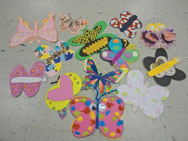 0612 OMMS butterflies